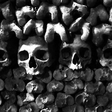 Skulls - Paris Catacombs, black and white version by merrywrath