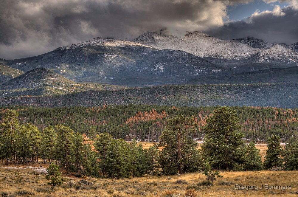 Fall  In Rocky Mountain National Park  by Gregory J Summers