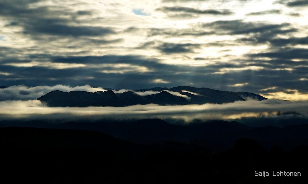 Foggy Morning  by Saija  Lehtonen