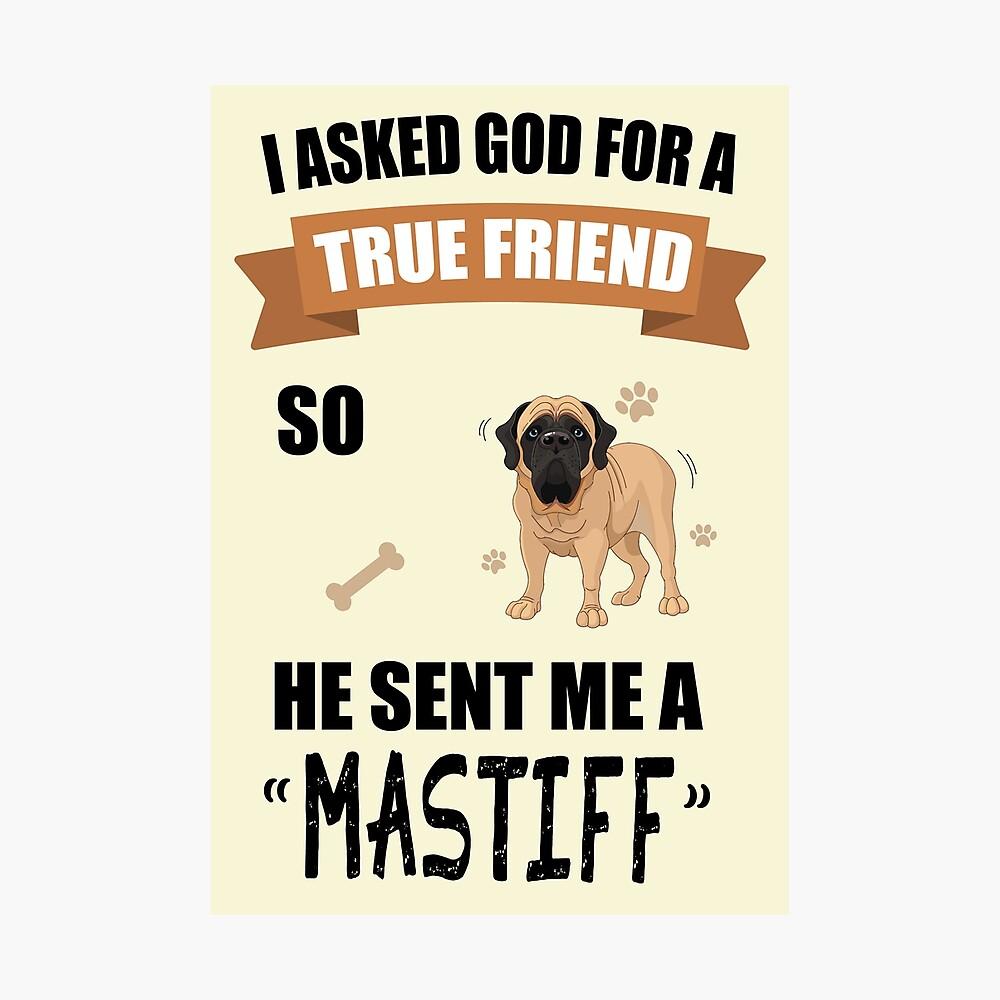 LOVE//ALL SIZES Pug /& Bull Mastiff Dog Studio Greeting Card -DS-C-LV-1193-107