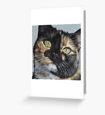 Cali's Stare Greeting Card