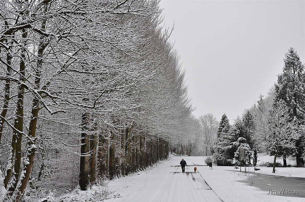 Winter Walk by Jim Wilson