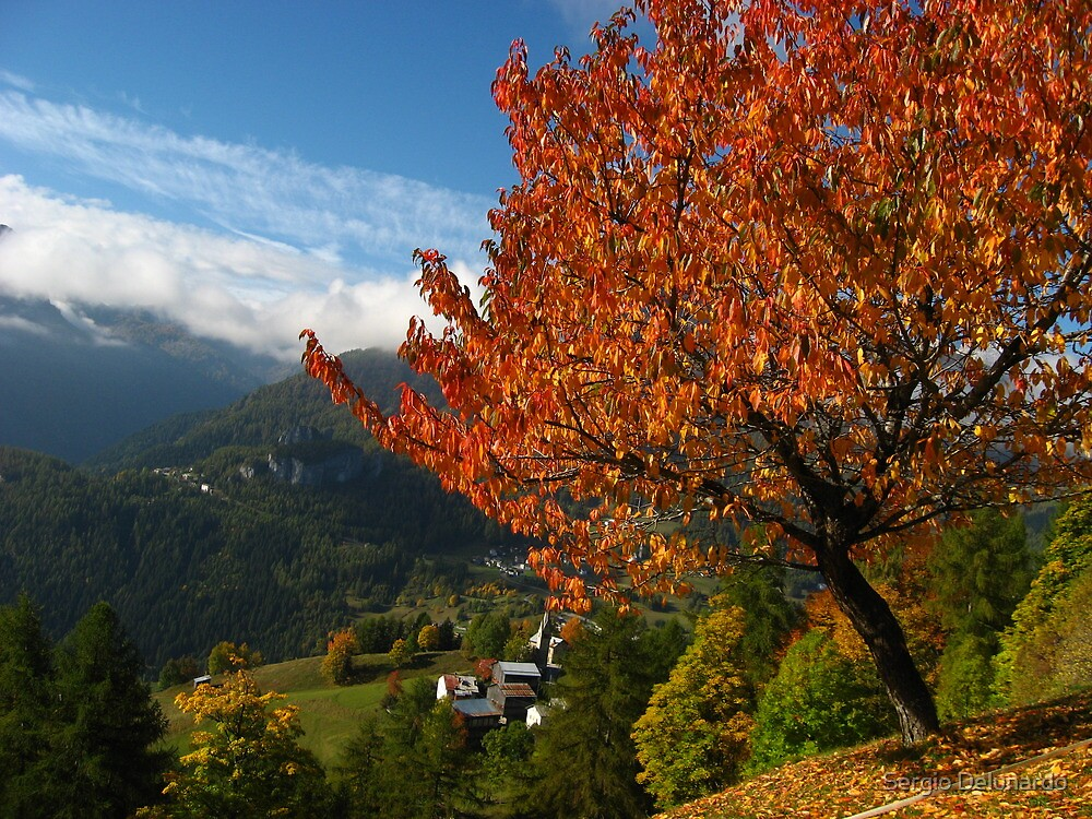 Colorful autumn day by Sergio Delunardo