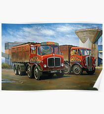 Sam Anderson's AEC tippers Poster