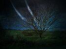 Tree@Night by smilyjay