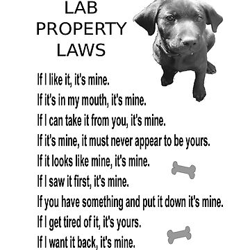 LAB PROPERTY LAWS by Uomo