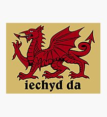 Welsh Dragon Photographic Print