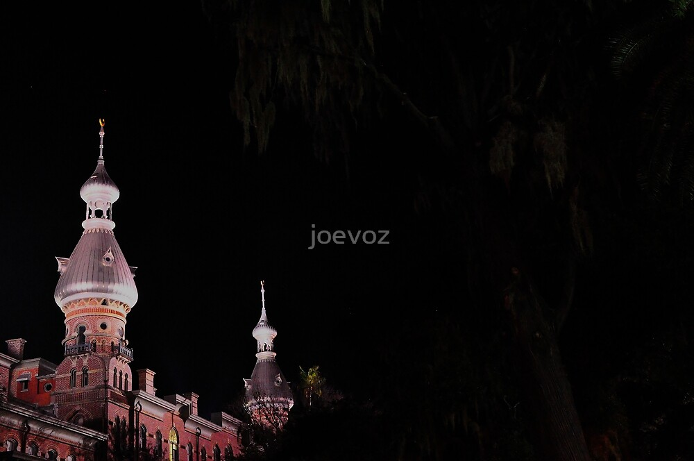 Tampa U Building and Trees by joevoz