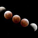 Lunar Eclipse  by jordancantelo