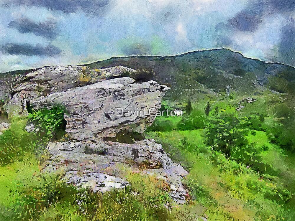 Basque country, Spain by David Carton