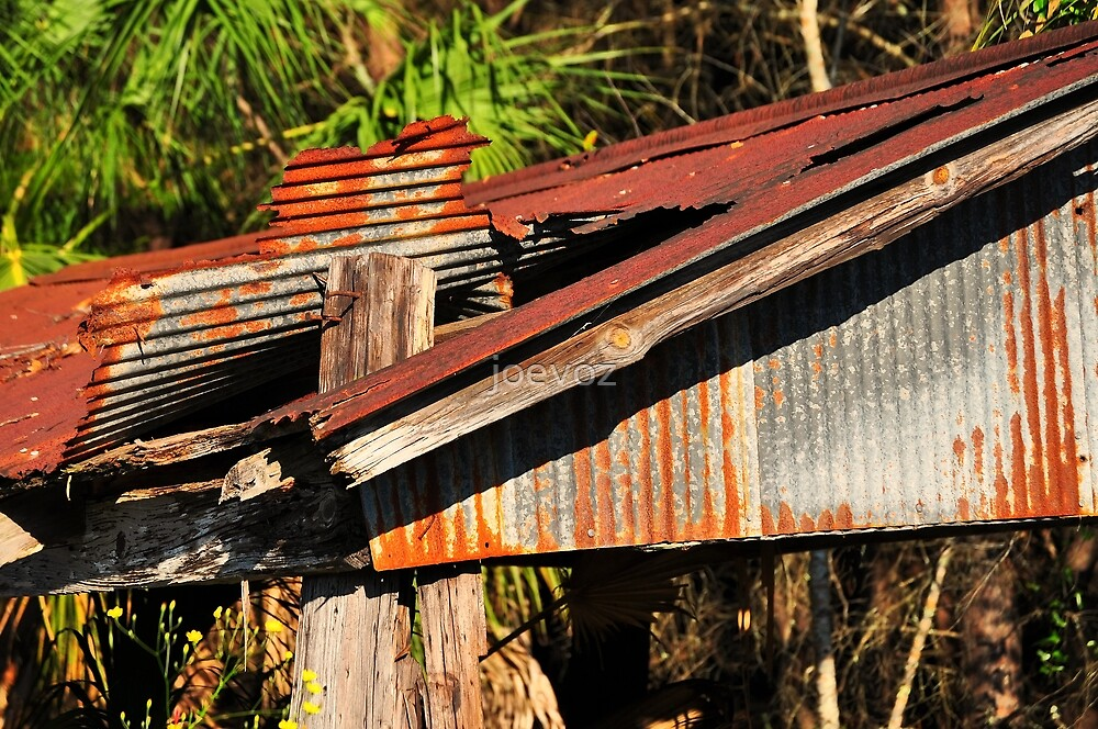 Old Shed Roof by joevoz