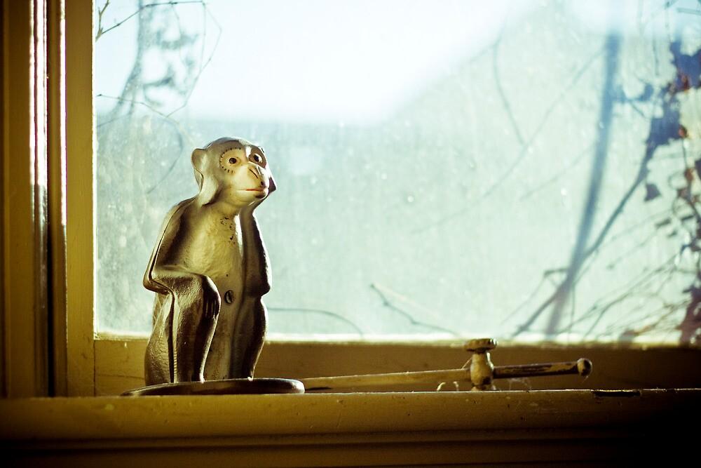 Thinking Monkey-2 by ScaredylionFoto