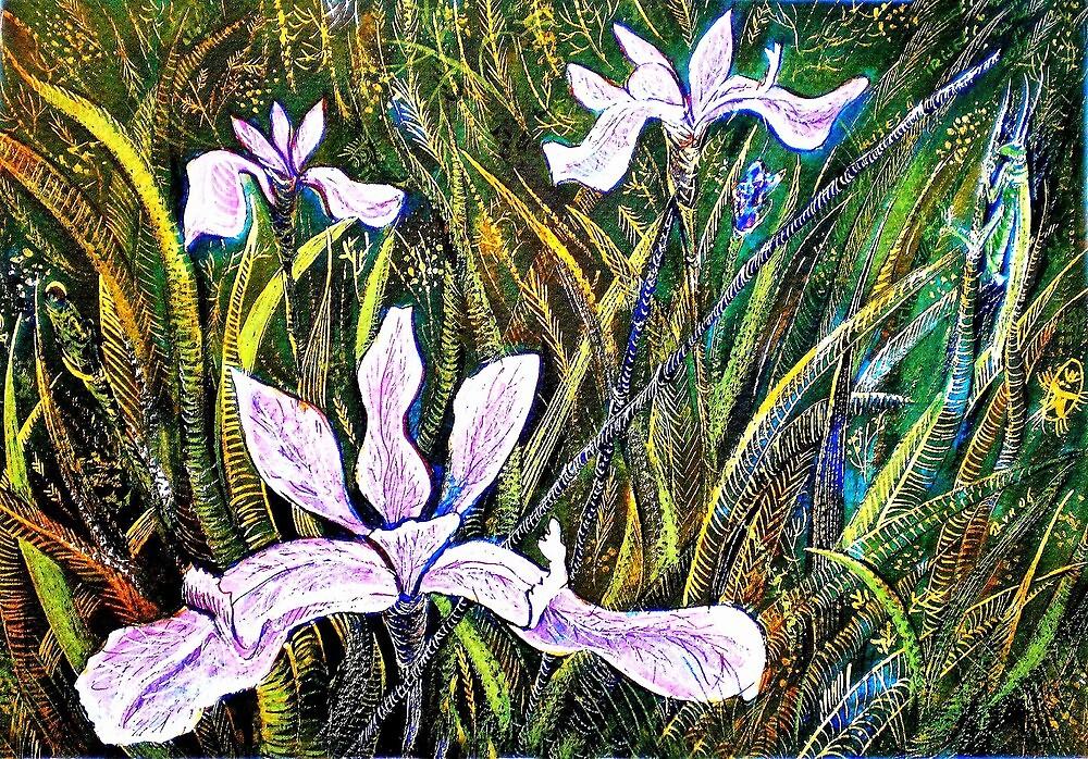 Irises by ivDAnu