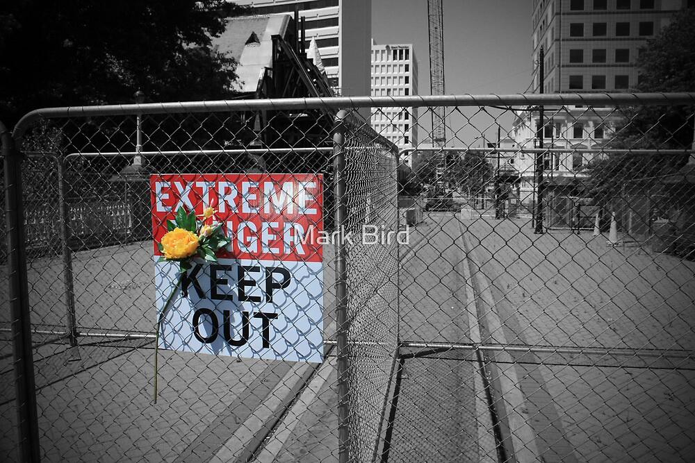 Christchurch Red Zone by Mark Bird