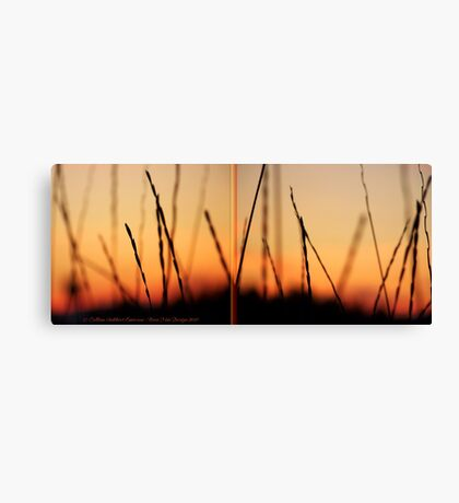Whispers (Diptych) Canvas Print