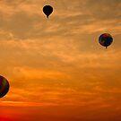 Hot-Air Balloons at Sunrise  by Chuck Gardner