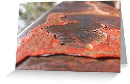Rusted Rail by Dietrich Pfeifer