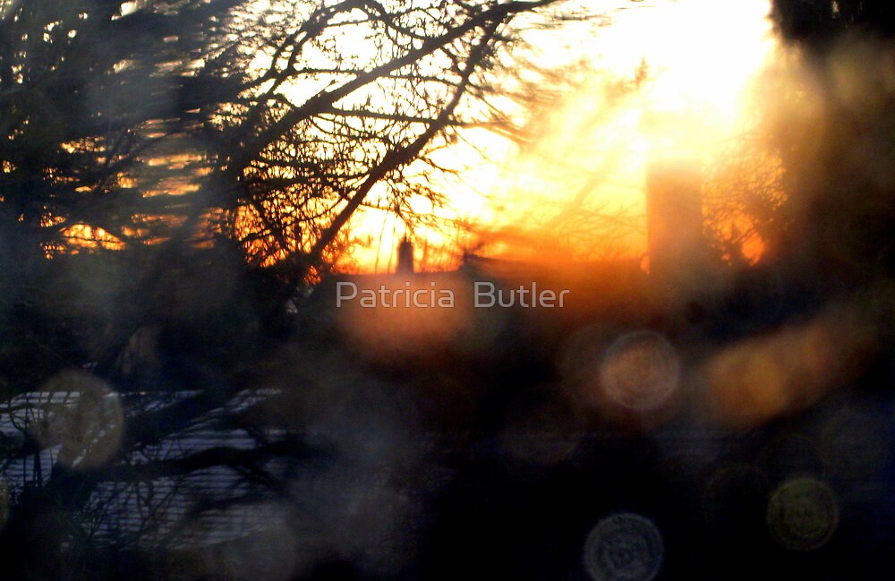 Beautiful Blurry Sunrise by Patricia  Butler