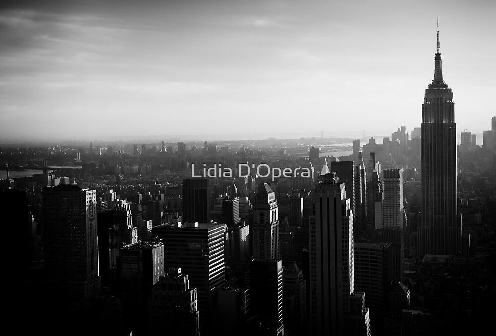 New York City by Lidia D'Opera