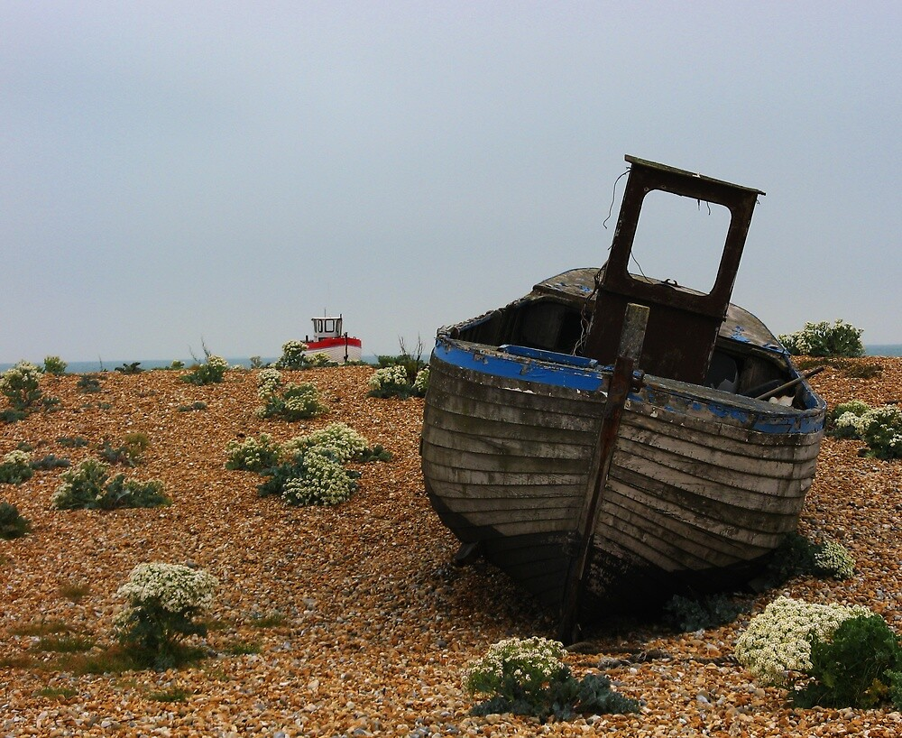 Shipwrecked, Dungeness, Kent by Bevy187