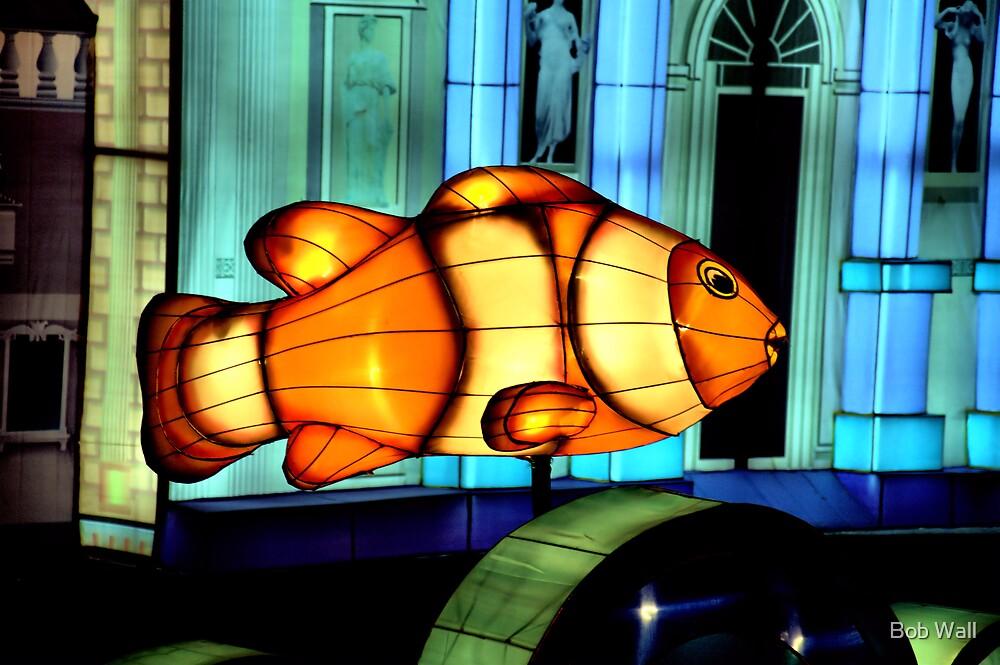 I Found Nemo by Bob Wall