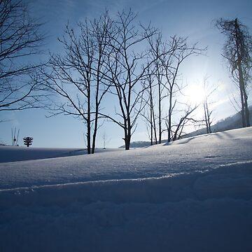 Snow Trees by joffotron