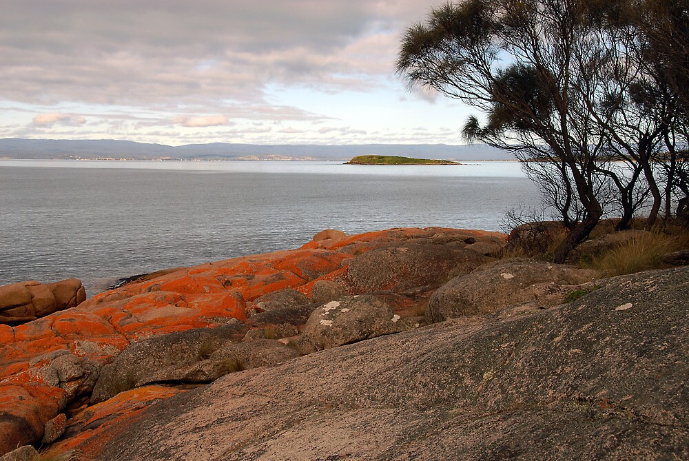 Early morning Coles Bay, Freycinet, Tasmania by Richard  Stanley