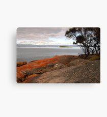 Early morning Coles Bay, Freycinet, Tasmania Canvas Print