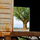 Rusty Past by Gigi Guimbeau