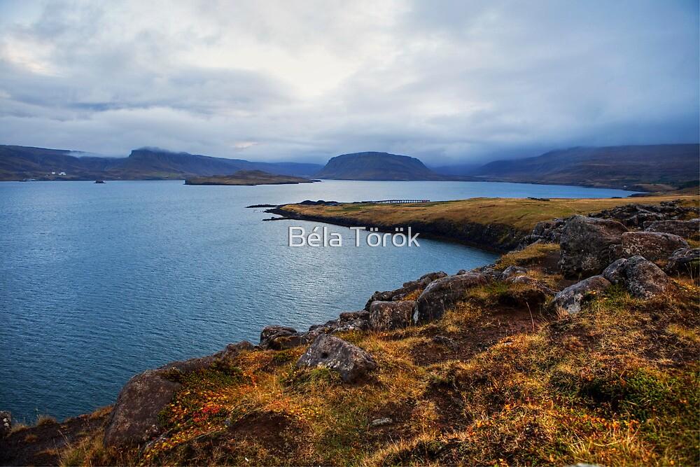 Hvalfjörður by Béla Török