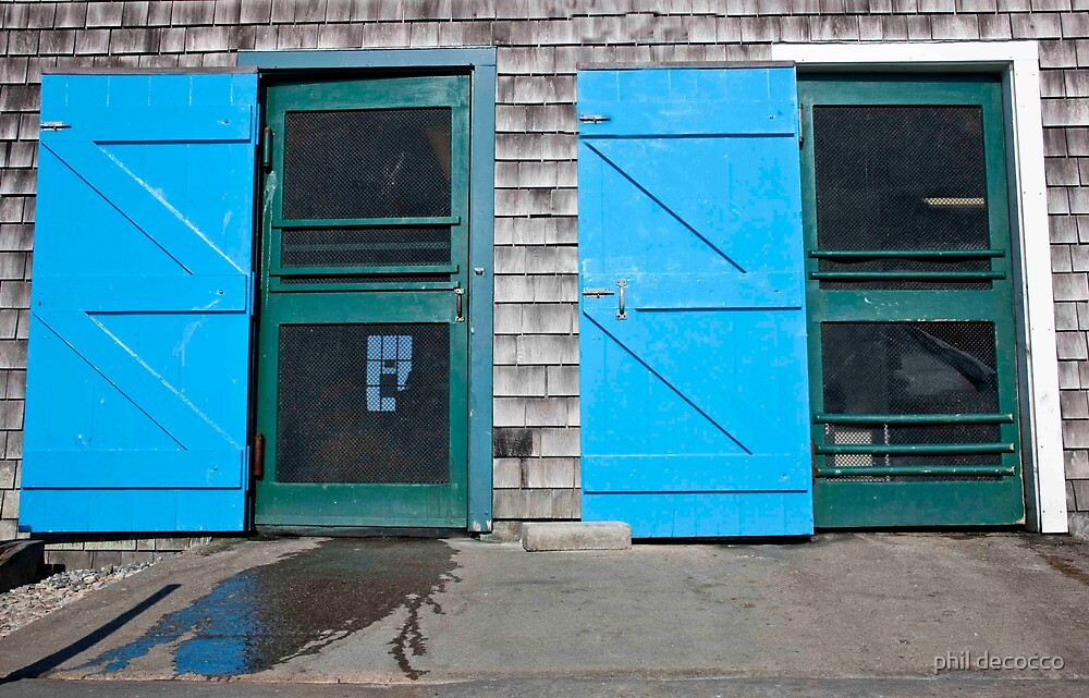Fish Market Doors by phil decocco