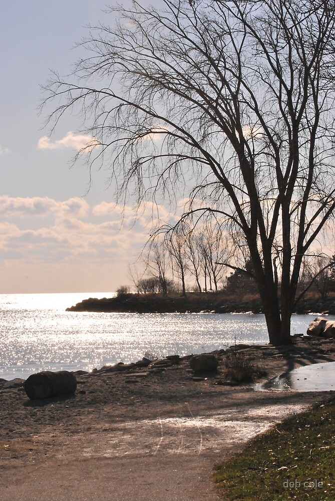 Humber Bay Park East by deb cole
