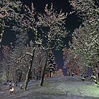 Stillness at the graveyard by Frank Olsen