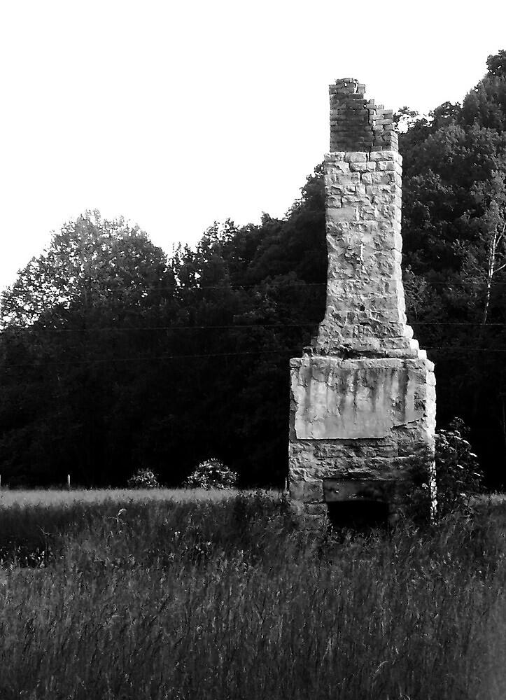 History in the Meadow by Cynara Perez-Switzer