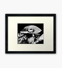 Mushroom Cap Macro Framed Print