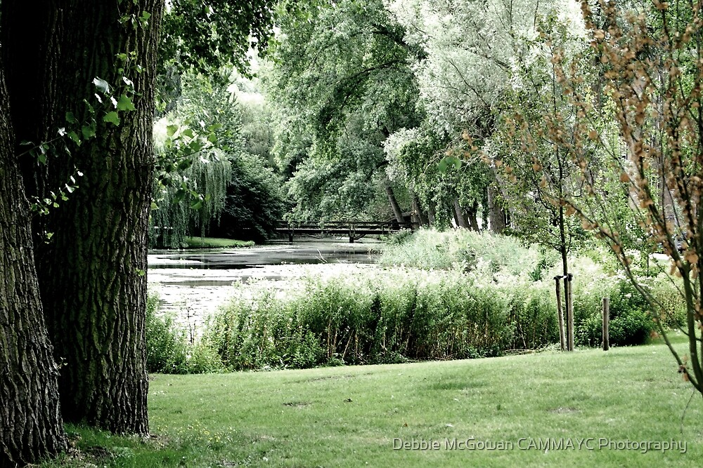 A peaceful pond by Debbie McGowan CAMMAYC Photography