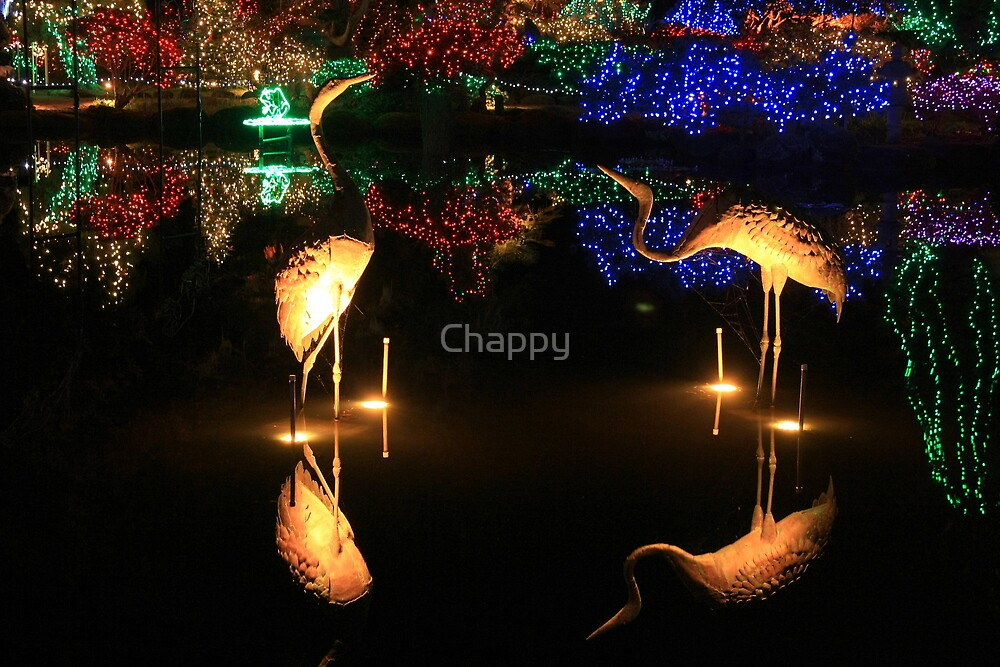 Bright Lights of Christmas #1 by Chappy