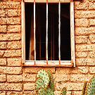 Old Western Jailhouse Window by Bo Insogna