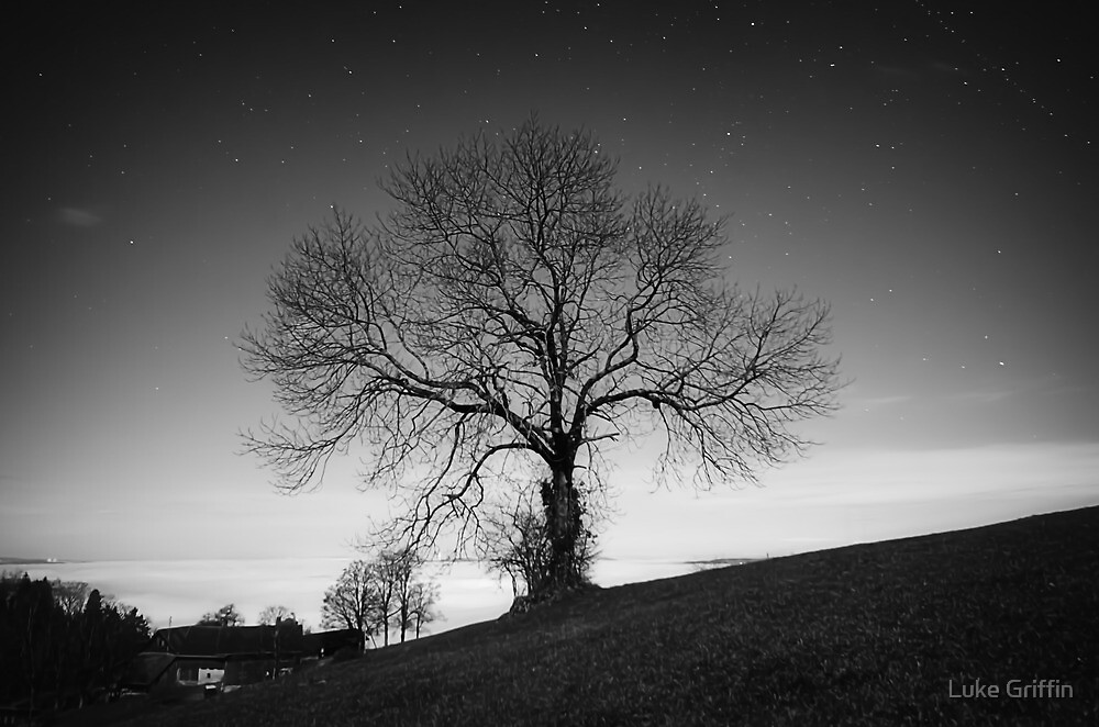 Reaching for the Stars by Luke Griffin