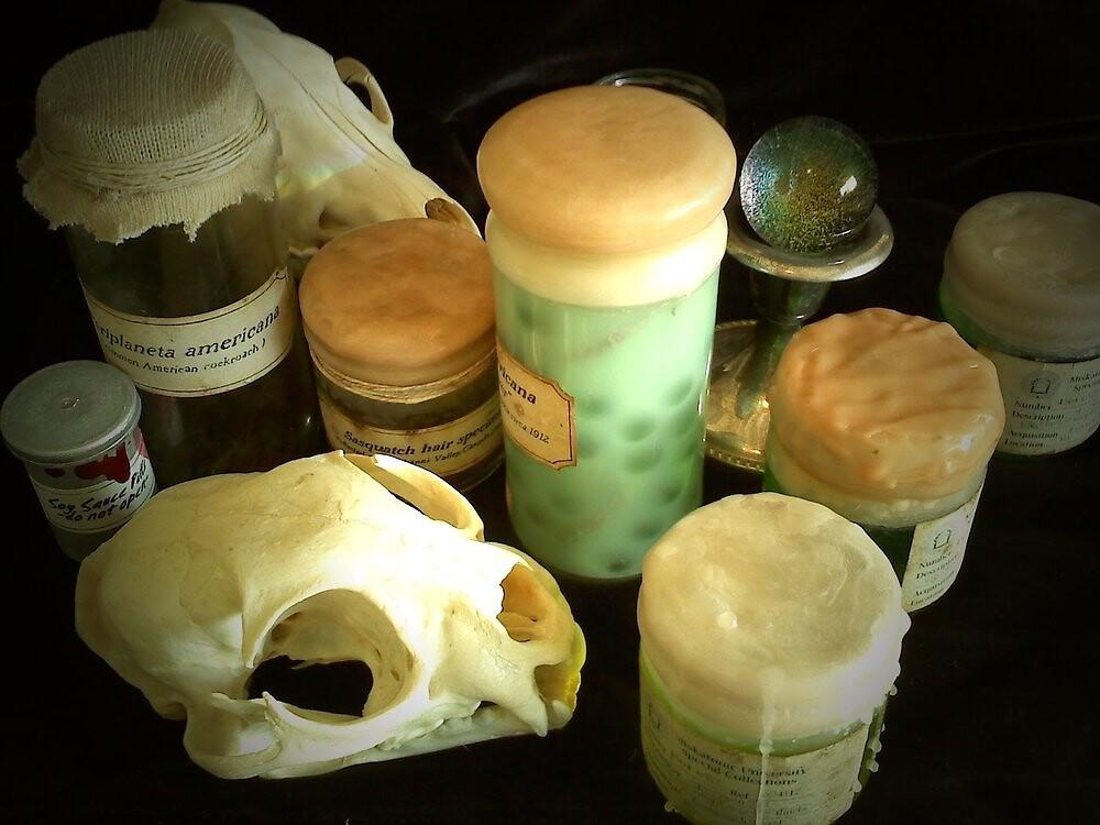 Specimen Jars by Schlitzie