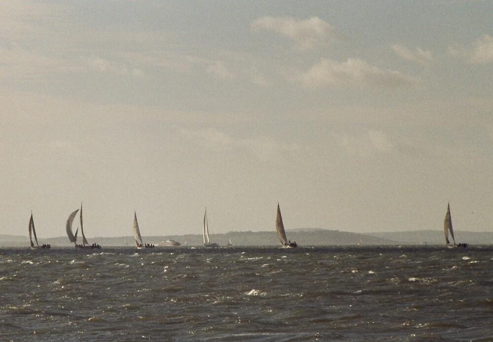 Sailing on Choppy Water by Thomas Martin