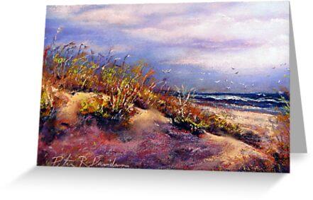 Stone Harbor Beach by Peter R Davidson