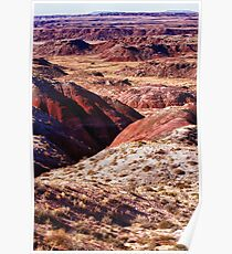 The Painted Desert  8023 Poster