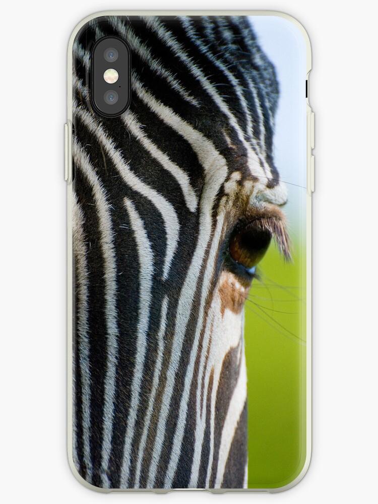 Zebra Eye by Alan May