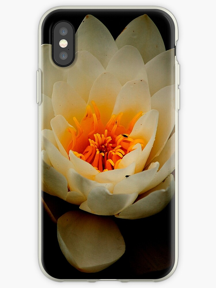 Water lily iPhone case by Esther  Moliné