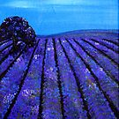 Lavender Fields Tasmania by Rachel Ireland Meyers