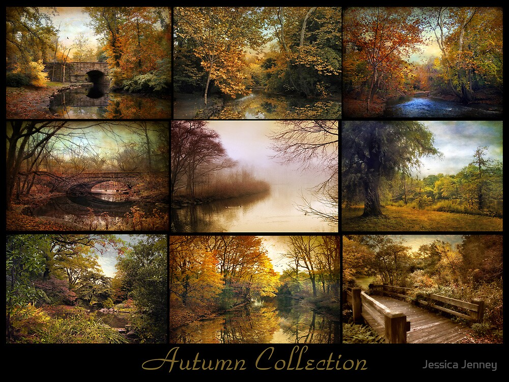 Autumn Collage by Jessica Jenney