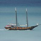 Aruba Boats by Purohit