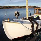 Boat, West Sweden by Jeanne Horak-Druiff