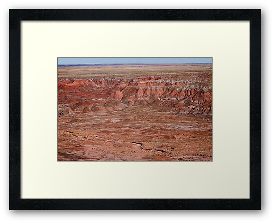 The Painted Desert  8064 by Bo Insogna